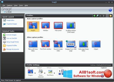 Captura de pantalla Snagit para Windows 8.1