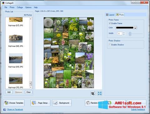 Captura de pantalla CollageIt para Windows 8.1